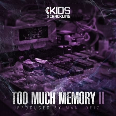 "Album Cd ""Too much Memory 2 - Mani Deiz"""
